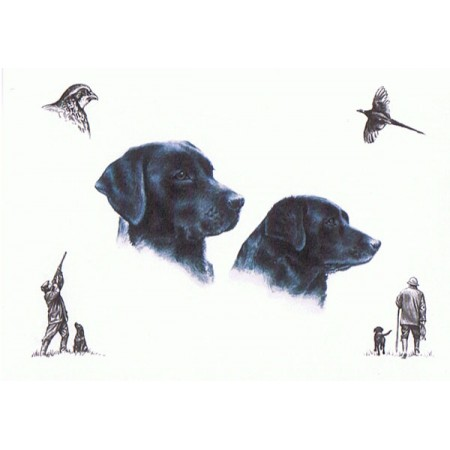 """Study Of Labradors"" - Fergusson Sporting Art Greeting Card"